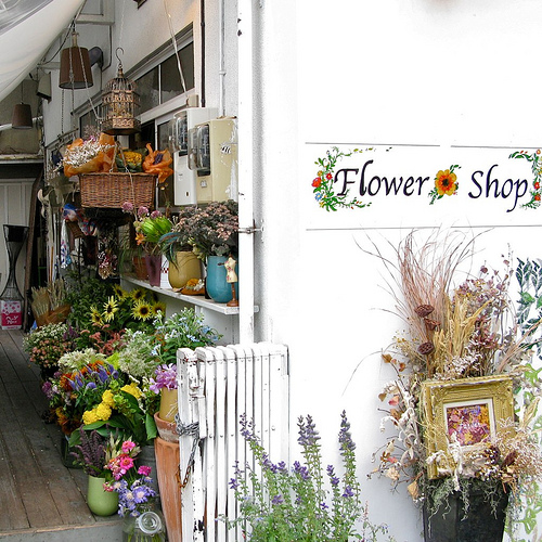 Industry Overview: Florist Shop Business
