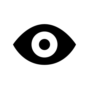 Noun Project black and white eye icon